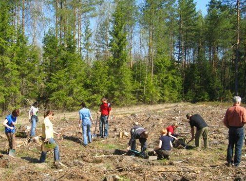 wspieranie iniciatyw proekologicznych w budownictwie - grupa osób z łopatami obok lasu